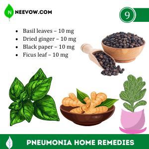HERBAL MEDICINE FOR PNEUMONIA