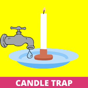 How to Get Rid of the Gnats - Candle Trap