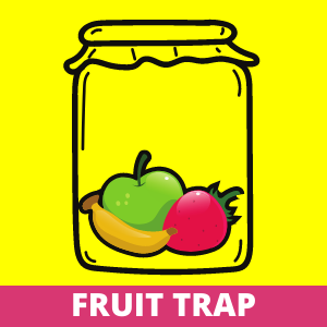 How to Get Rid of the Gnats - Fruit Trap