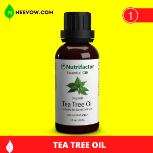 Tea Tree Oil to Get Rid of Bed Bugs